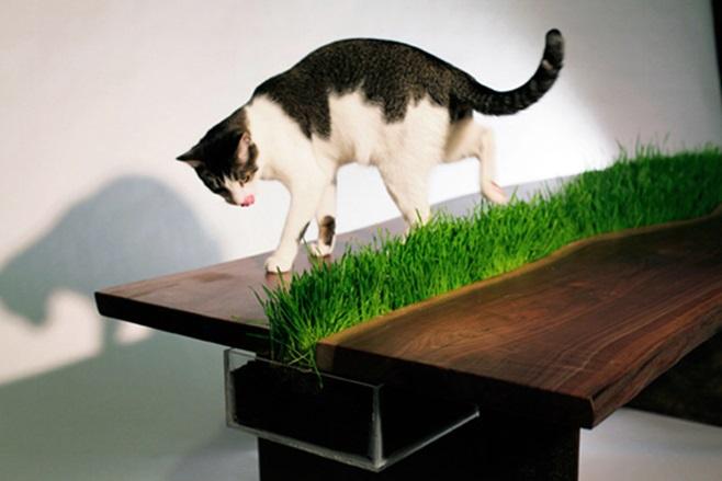 planter table 1