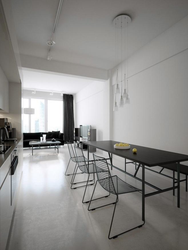 Modern minimalist black and white lofts 1