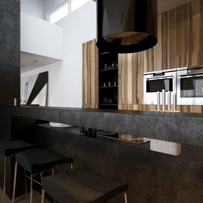 Modern minimalist black and white lofts 12
