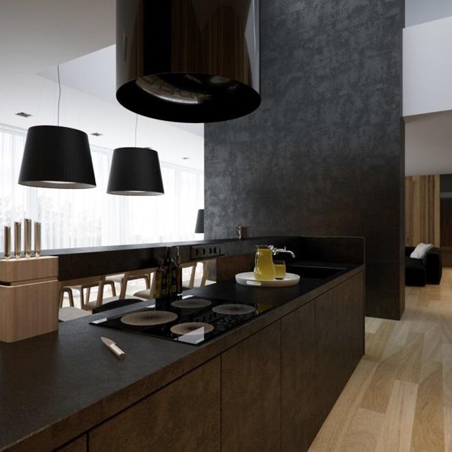 Modern minimalist black and white lofts 13