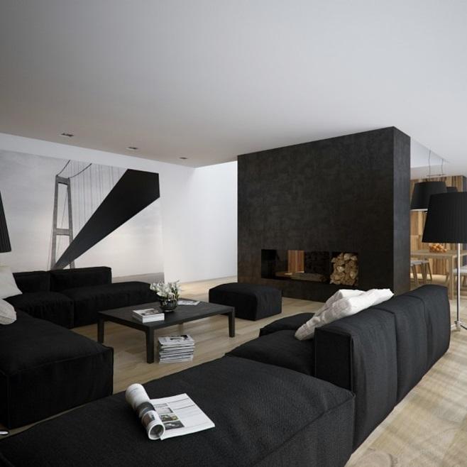 Modern minimalist black and white lofts 17