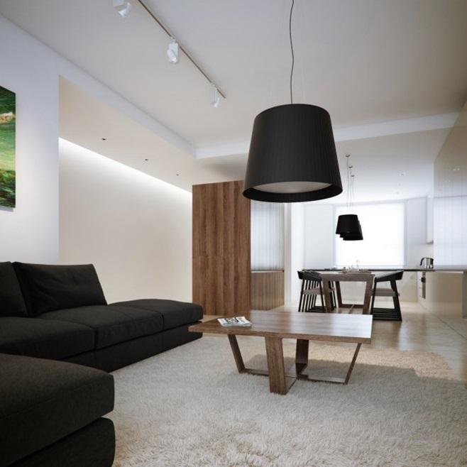 Modern minimalist black and white lofts 19