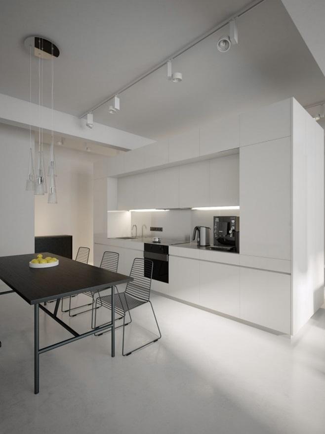 Modern minimalist black and white lofts 2