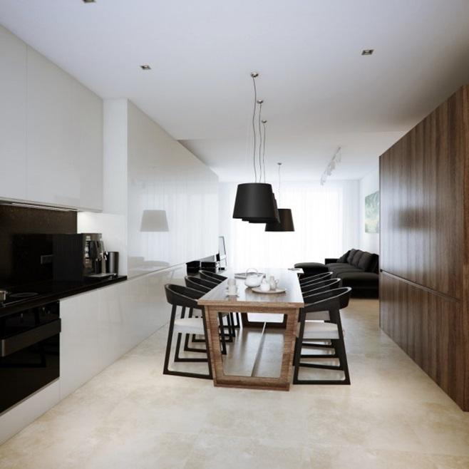 Modern minimalist black and white lofts 21