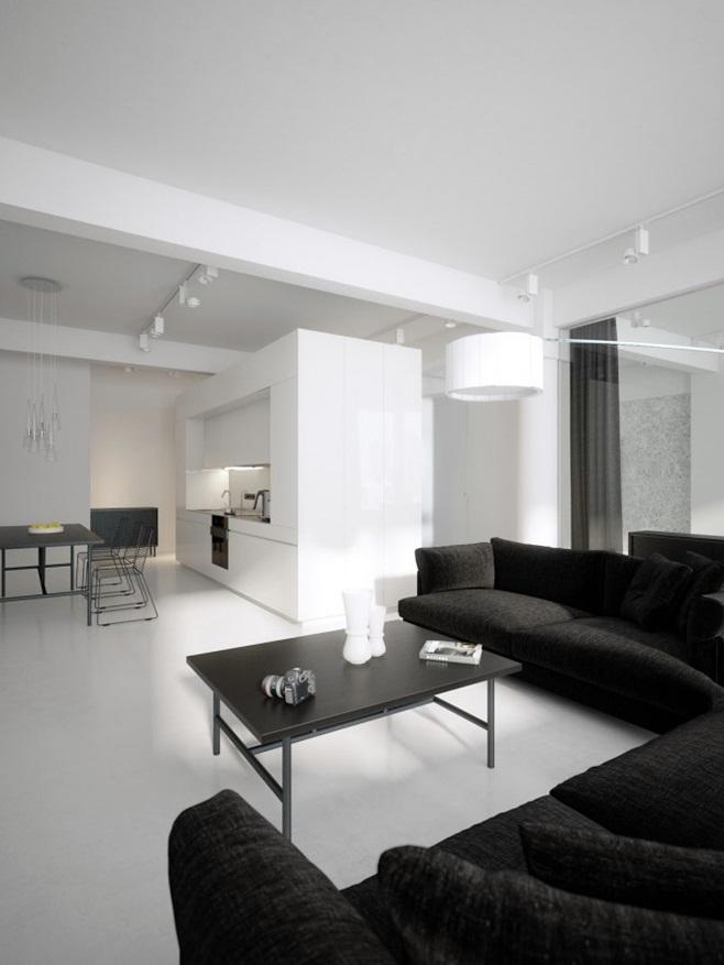 Modern minimalist black and white lofts 4