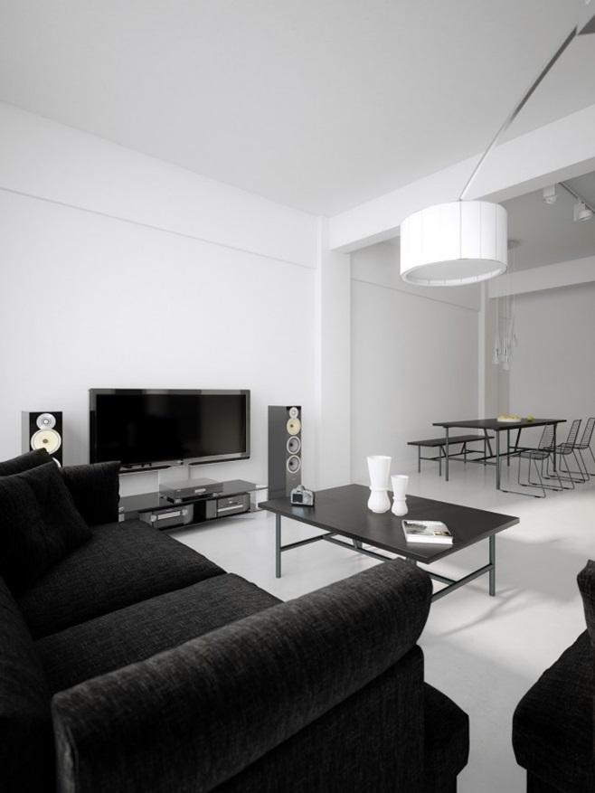 Modern minimalist black and white lofts 5