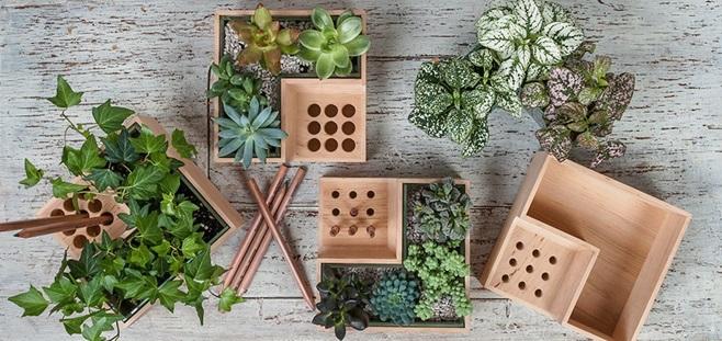 eco planter 3
