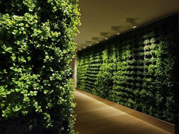 Customized Green Walls 1