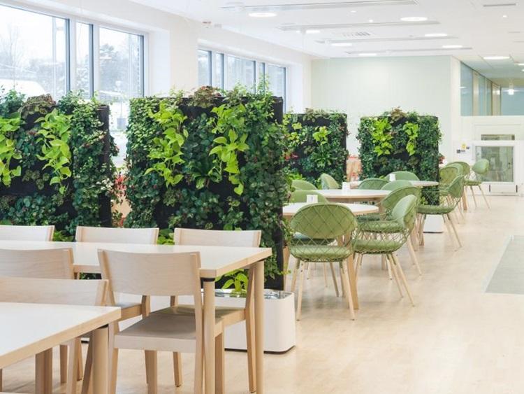 Customized Green Walls 17