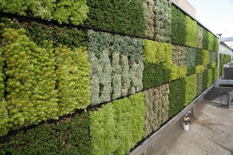 Customized Green Walls 22