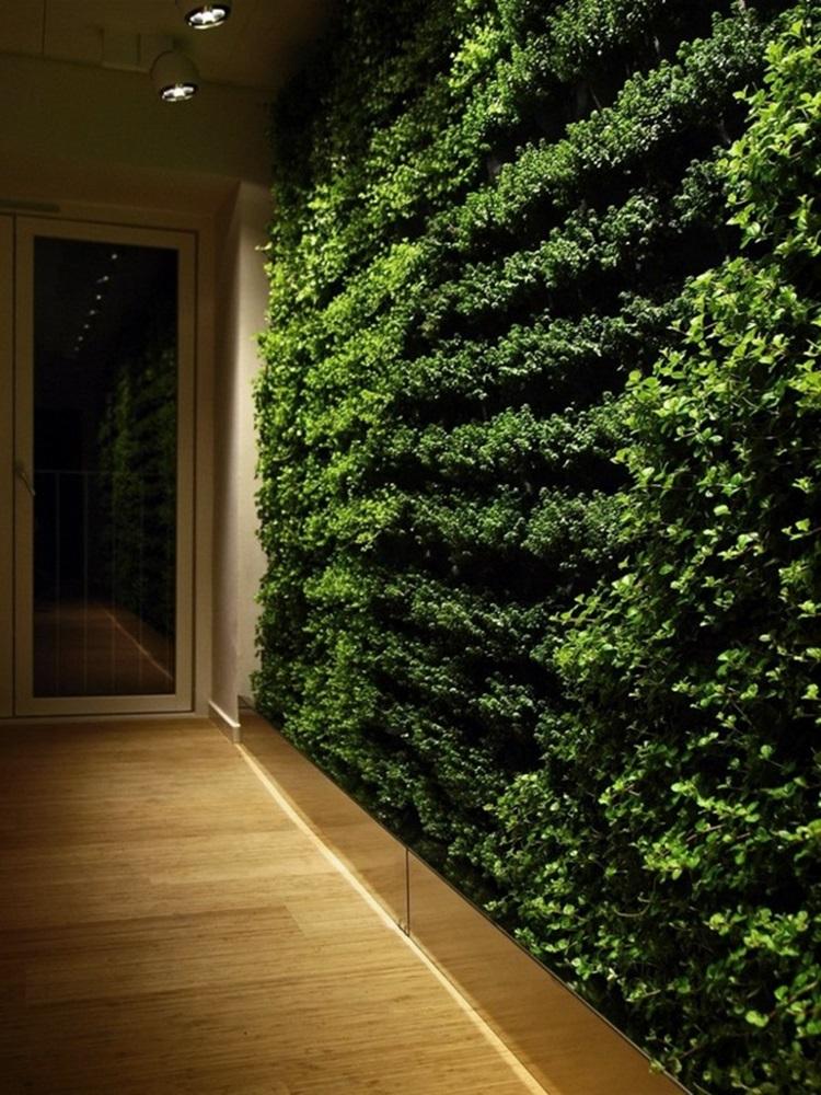 Customized Green Walls 3