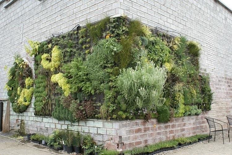 Customized Green Walls 30