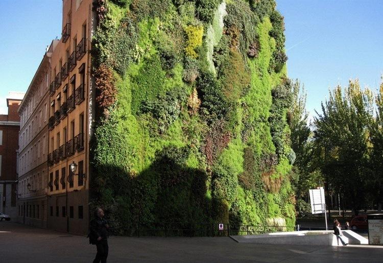 Customized Green Walls 31
