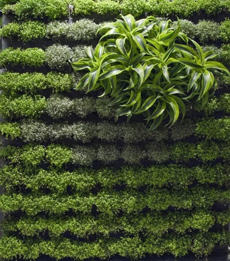Customized Green Walls 4