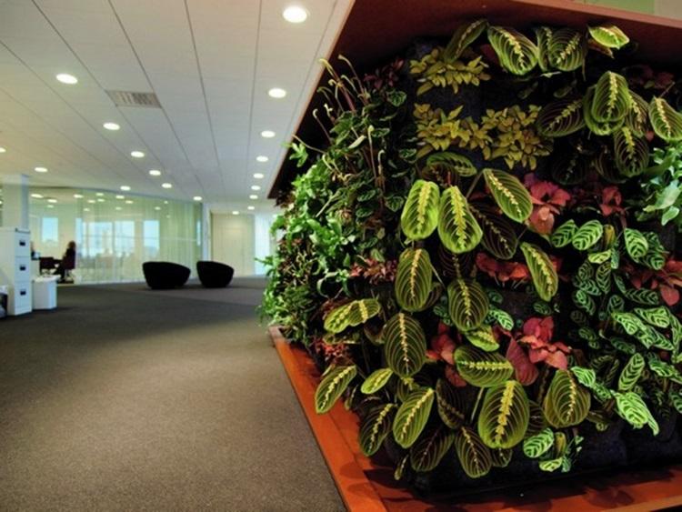 Customized Green Walls 5