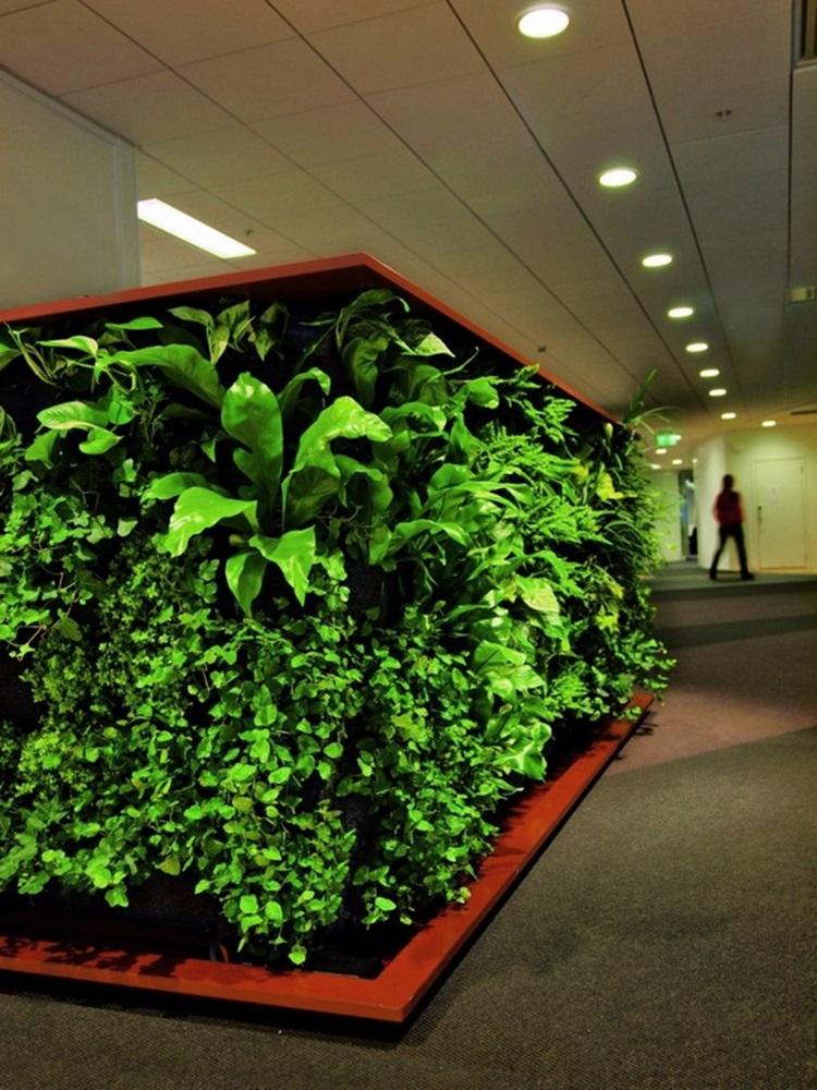 Customized Green Walls 6