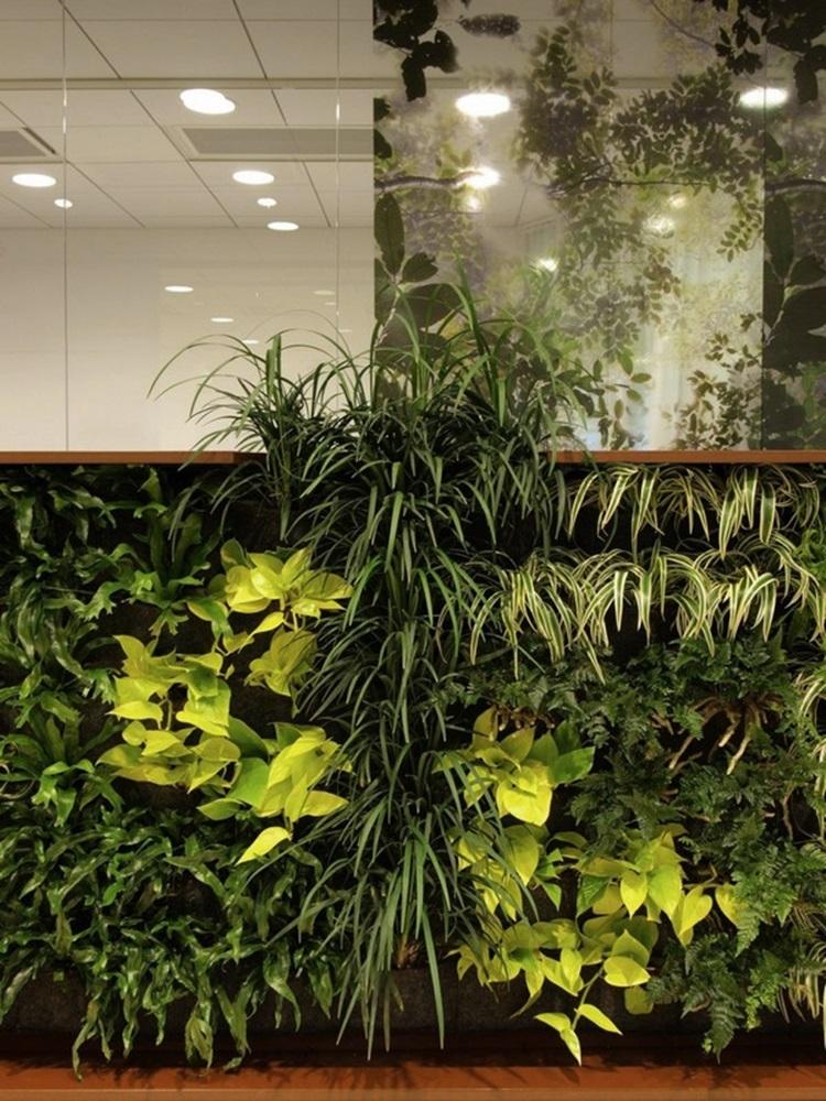 Customized Green Walls 7