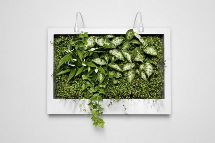 Customized Green Walls 8