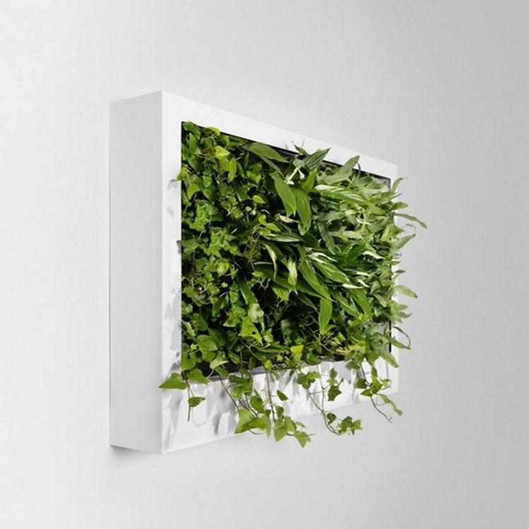 Customized Green Walls 9